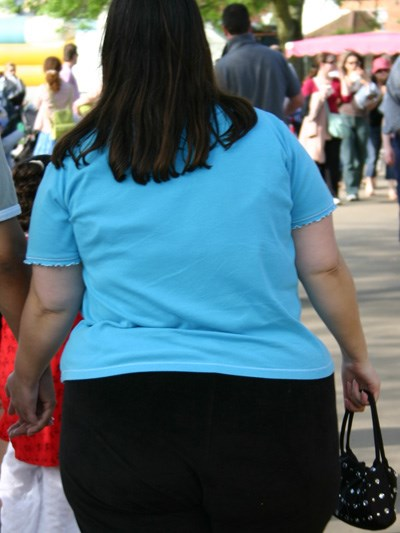 Dietary guidelines focus on obesity