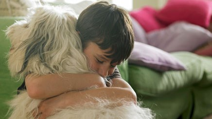 Dogs at home mean fewer breathing problems for kids