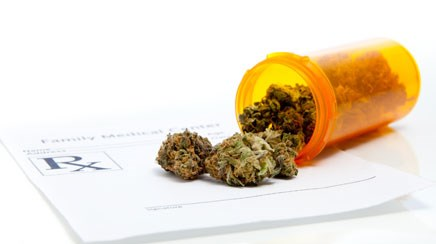 Could there be a correlation between medical cannabis laws and a decrease in opioid overdose deaths?