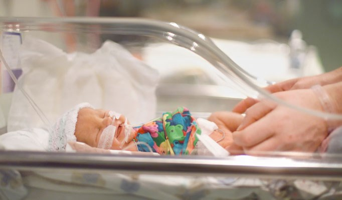 Navigating healthcare services for premature infants