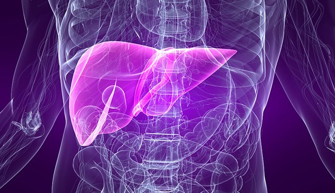 Standard of care for patients with elevated liver enzymes