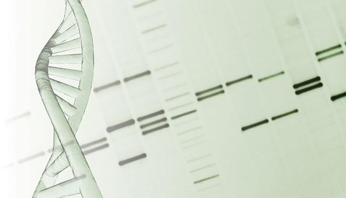 New genetic targets IDed for HCV treatment