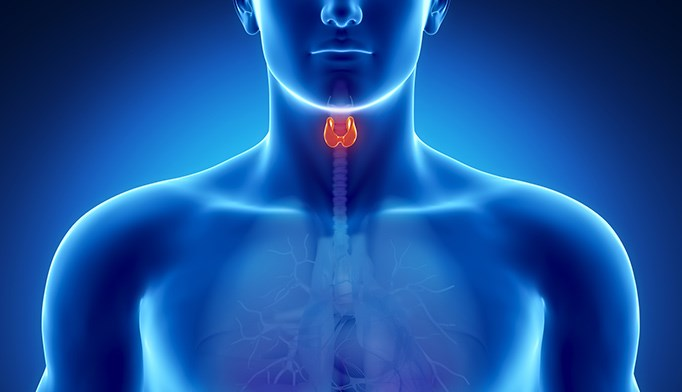 FDA approves first Tx for refractory thyroid cancer