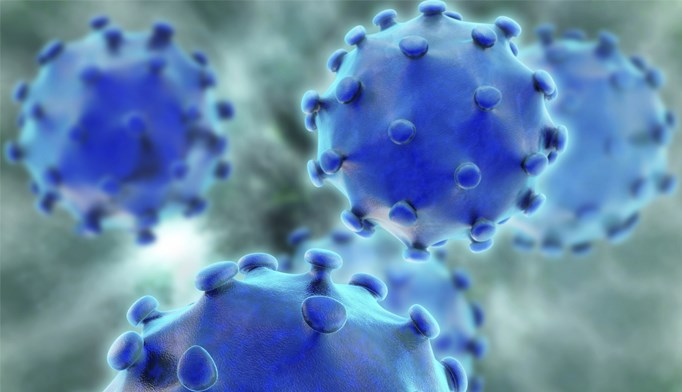 New hepatitis C treatments promising