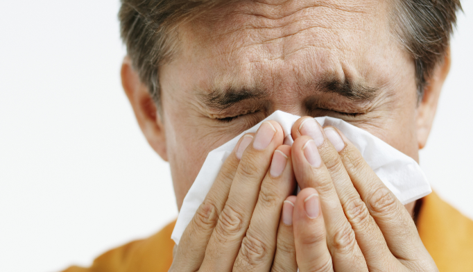 New hypersensitivity/allergic disease model proposed