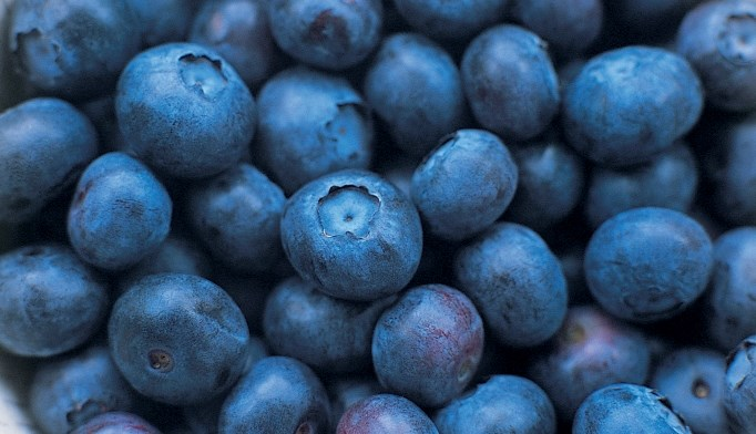 Blueberry consumption can reduce systolic blood pressure.