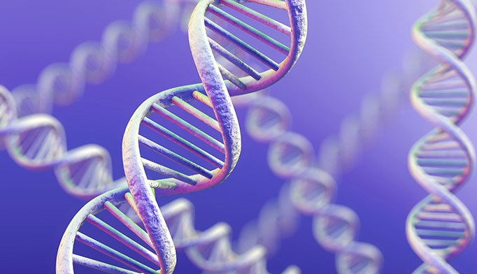 Researchers identified two genes with potentially damaging genetic variants that could affect familial Parkinson's susceptibility.