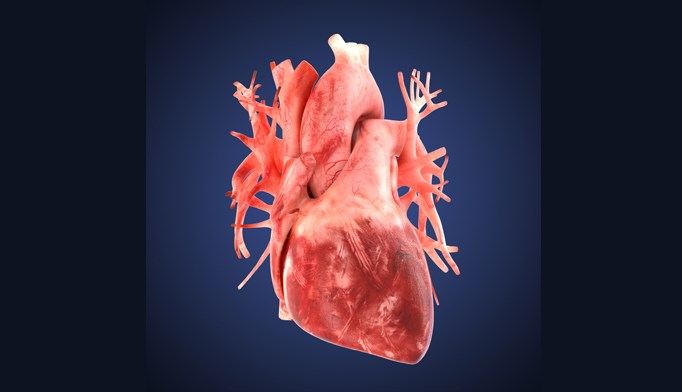 Canakinumab at a dose of 150 mg every 3 months led to a significantly lower rate of recurrent cardiovascular events than placebo.