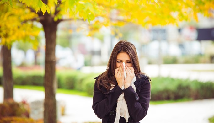 Significant improvements were found in allergen immunotherapy for local allergic rhinitis.
