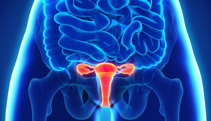Elagolix May Be Effective for Reducing Pain From Endometriosis