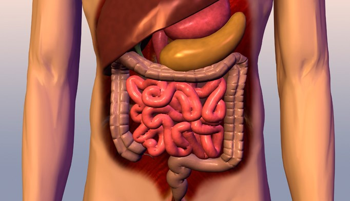 A step-by-step approach to managing gastrointestinal bleeding