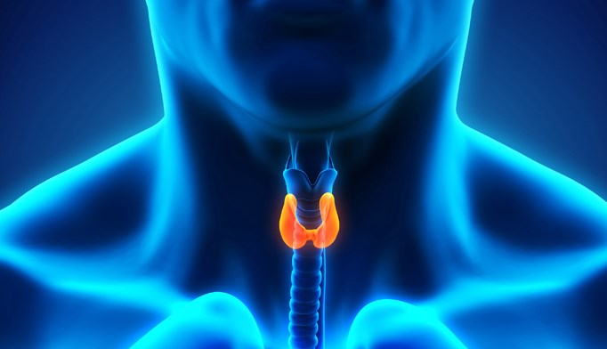 Thyroid disease associated with higher incidence of manic relapse in bipolar disorder