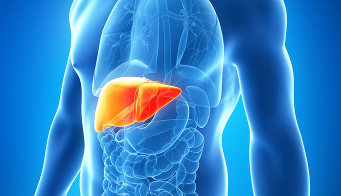 New hepatology rotation increases knowledge of liver disease among residents