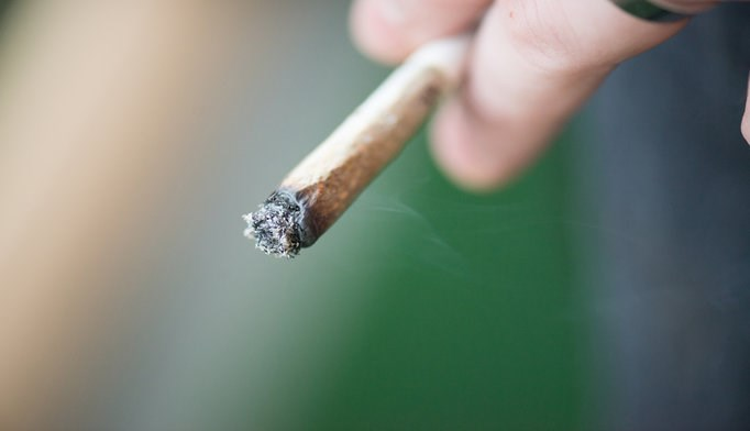 Marijuana use increases risk of hypertension-related mortality