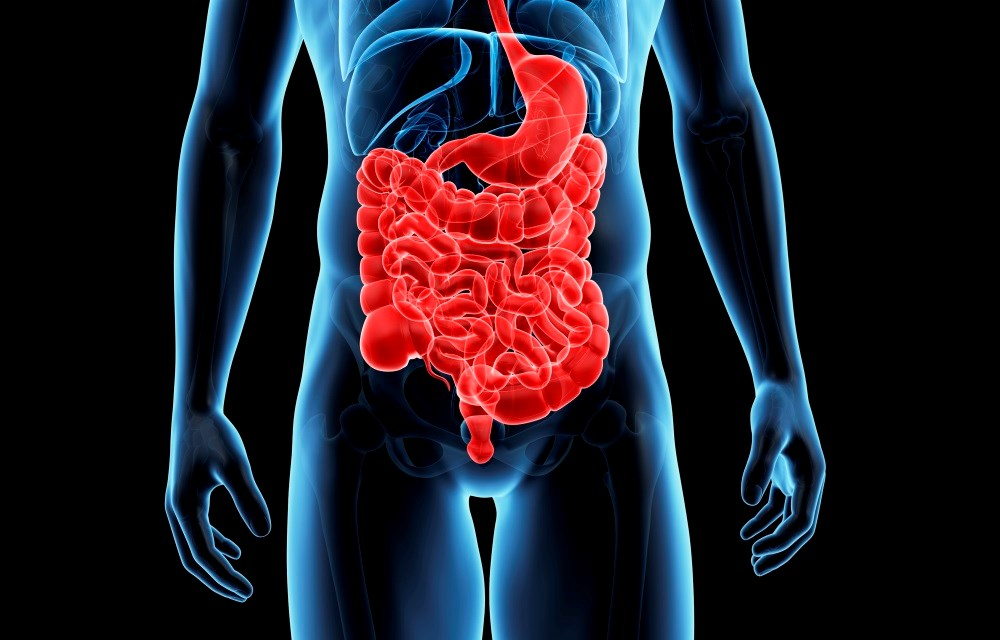 Colon cleansing regimens in inflammatory bowel disease: a review