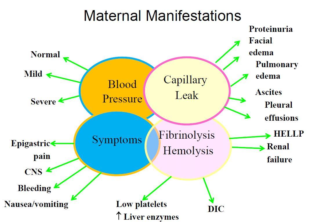 Pregnancy Induced Hypertension Nursing Care and Management