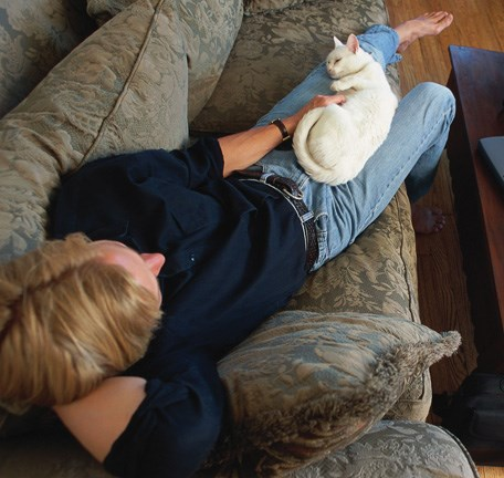 Early treatment decreases the risk of infection after a cat bite.