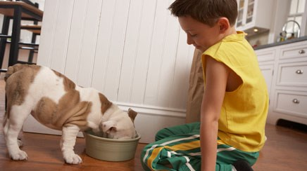 Pets help kids with autism improve social skills