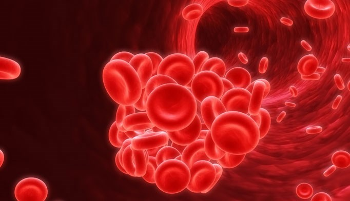 Apixaban wins approval for A-fib indication