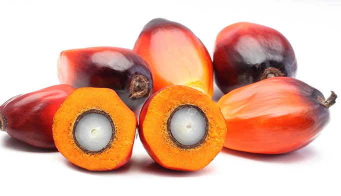 Red palm oil: A nutrient rich in vitamins and antioxidants