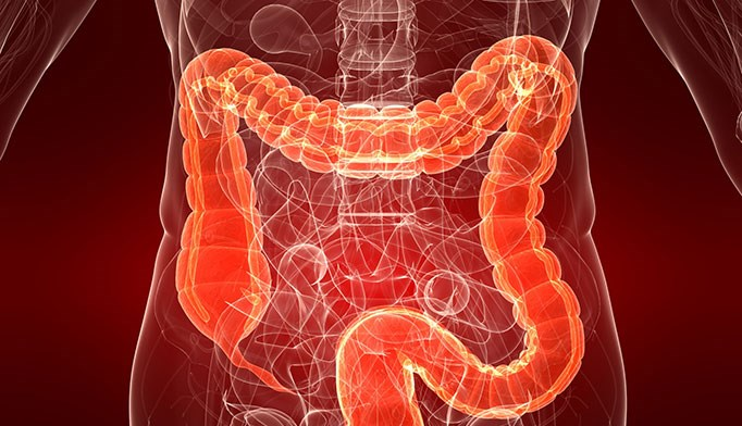 Oral pill for C. diff fecal transplant safe, effective