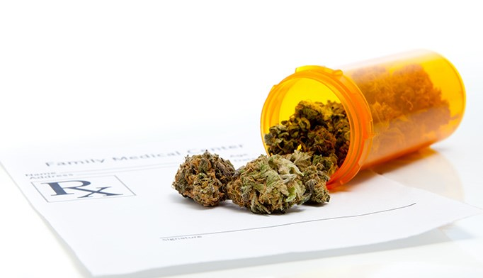 The first cohort study on the long-term safety of medical cannabis found that patients with chronic noncancer pain using cannabis daily for one year did not experience more serious adverse events.