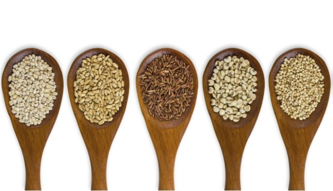 Advise patients to eat whole grains for health