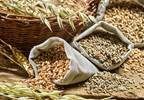 Debunking diabetes nutrition, carbohydrate myths
