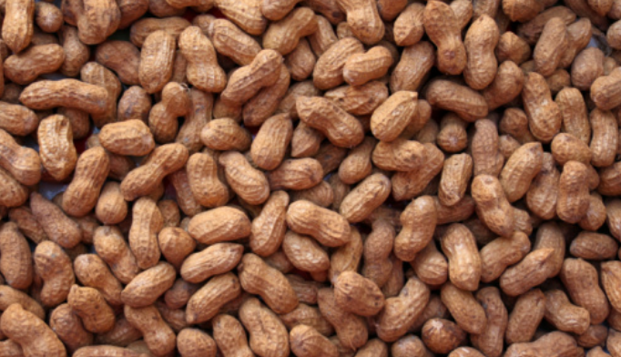 Advise peanut allergic patients to avoid cumin products