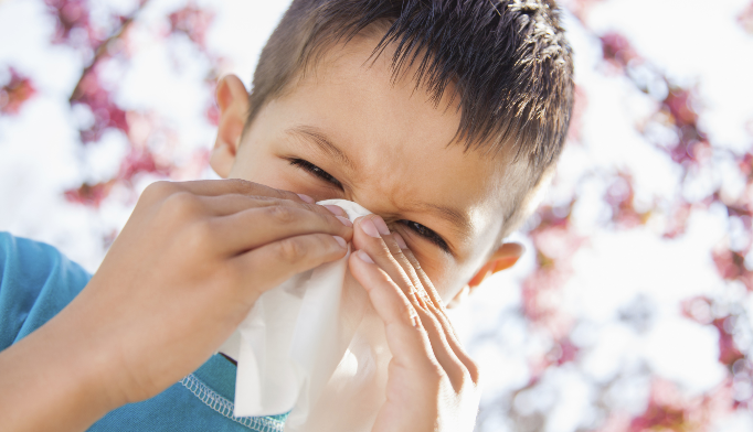 Prepare for a bad allergy season