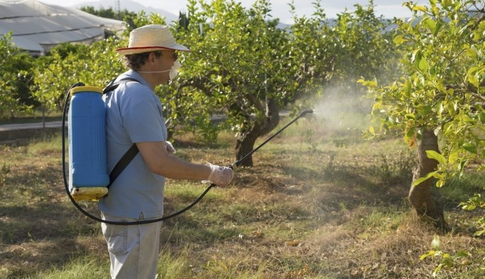Exposure to pesticides increases risk of developing diabetes