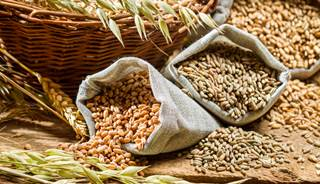 Cereal fiber was associated with lower CRC-specific and all-cause mortality, while vegetable fiber was associated with lower all-cause mortality.