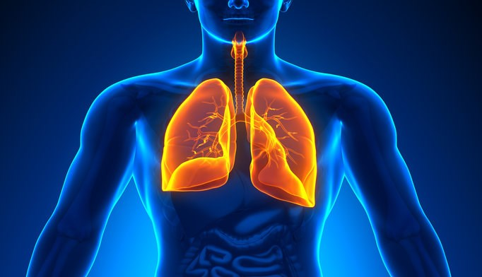 Pulmonary hyperinflation linked to larger pulmonary artery in COPD
