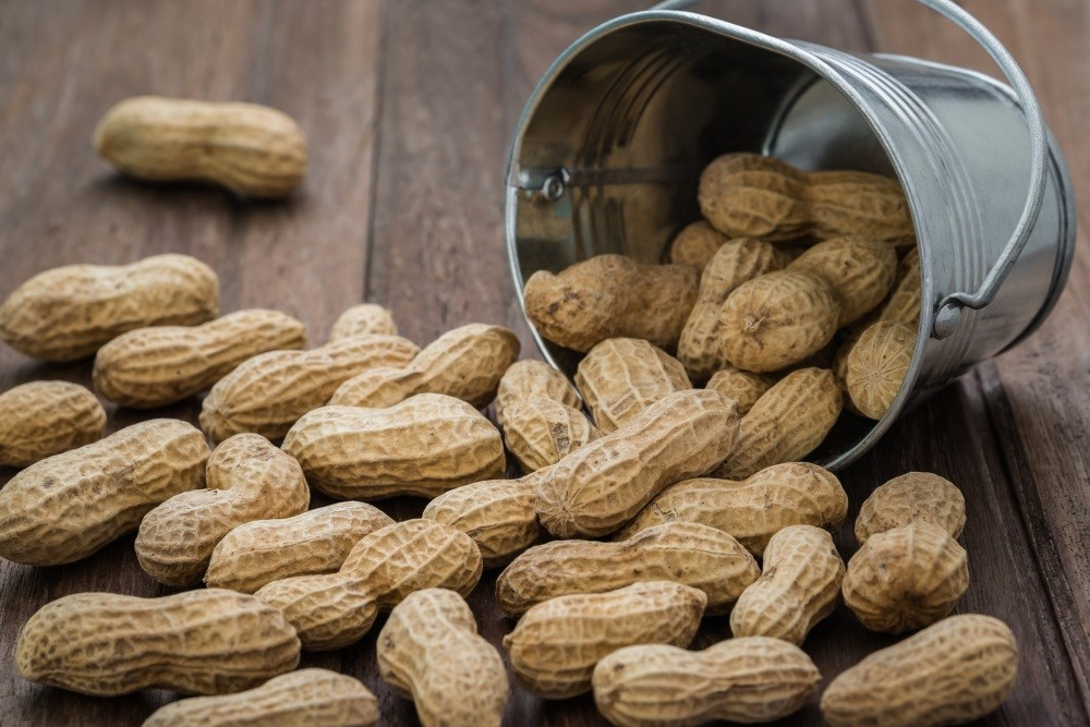 BLA for Novel Peanut Allergy Treatment Submitted to FDA