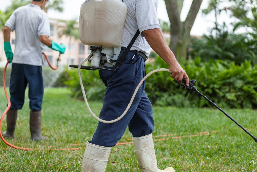 Minimizing occupational exposure to pesticides and herbicides can help to reduce the burden of COPD.
