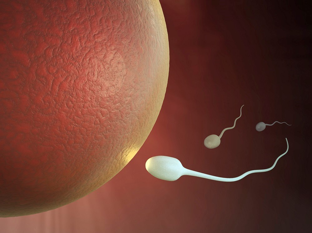 Sperm counts significantly declining in men from North America, Europe