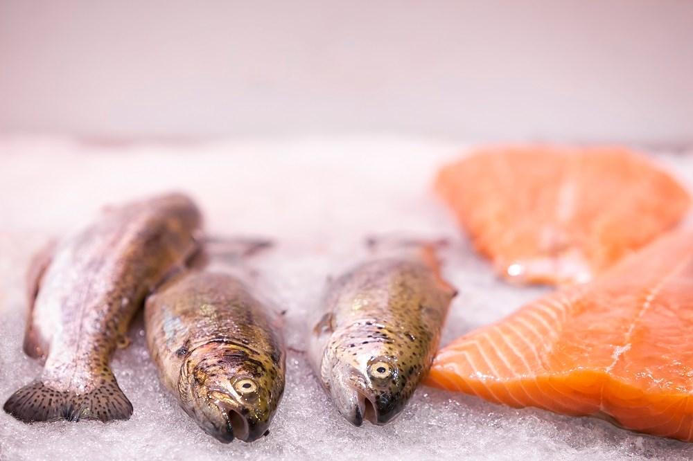 The researchers found that the most frequently involved fish were hake, megrim, and sole.