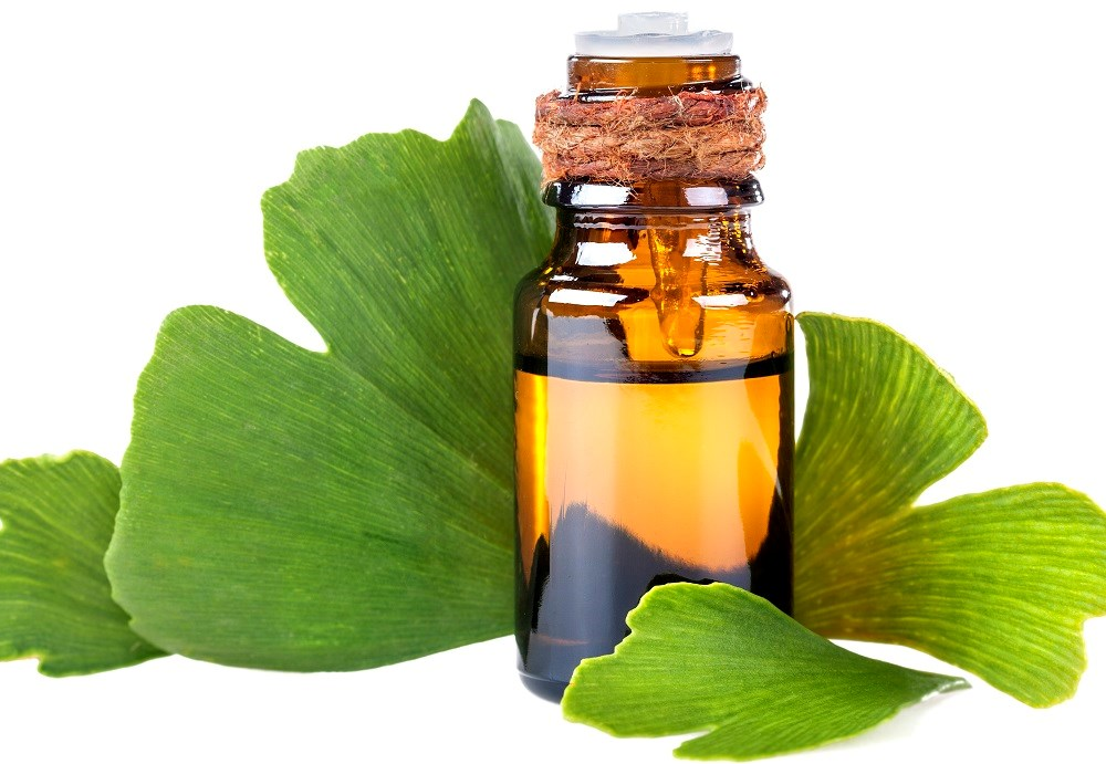 Ginkgo biloba extract aids cognition in stroke patients