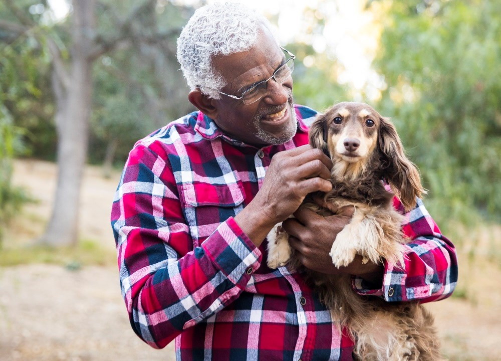 Pet ownership is not linked to decreased aging in the elderly.