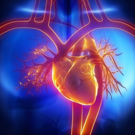 Case Study: Lower extremity edema and heart failure in a middle-aged woman
