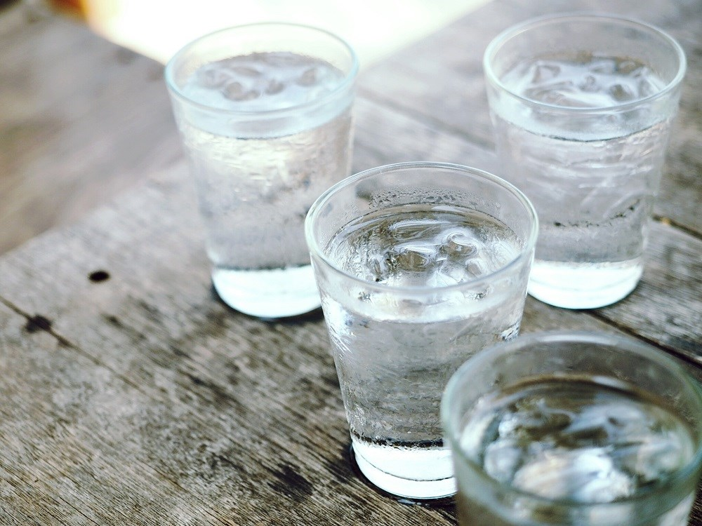 Increased Water Consumption Does Not Enhance Kidney Function in Chronic Kidney Disease