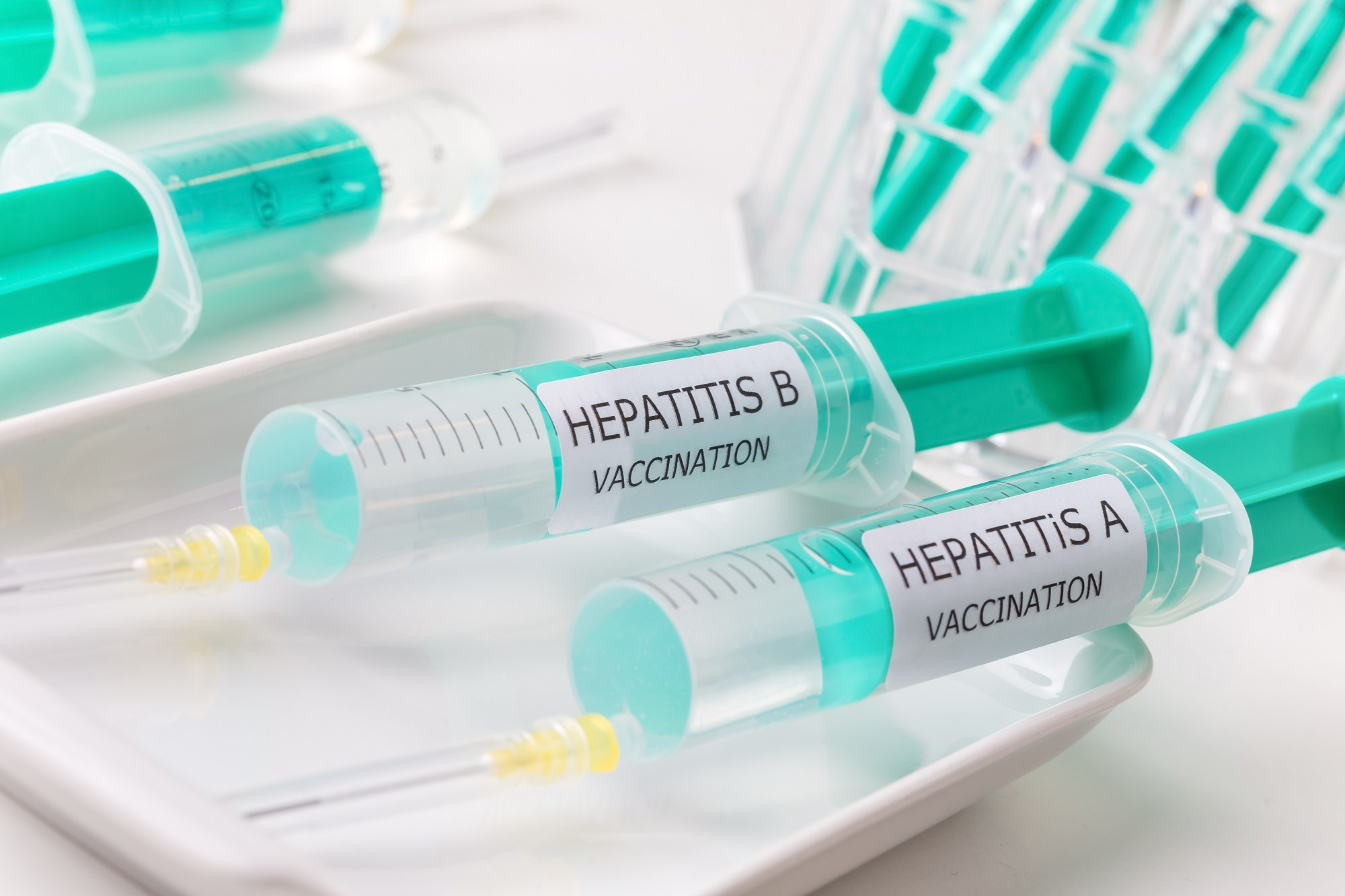 Demographic Insights Into Hepatitis Vaccination Practices